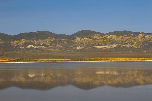 Soda Lake, Carrizo Plain, Superbloom, Spring