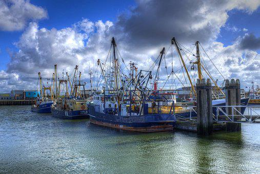 Lauwersoog, Port, Fisheries, Fishing Boats, Water