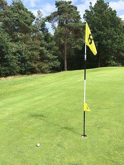 Golf, Golf Course, Sports, Glove, Green