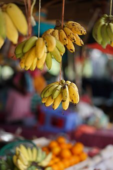 Banana, Fruit, Fruits, Yellow, Healthy, Banana Shrub
