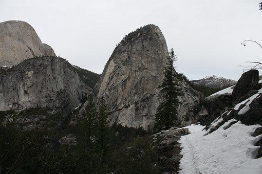 Yosemite, Forest, Park, Nature, National, Usa
