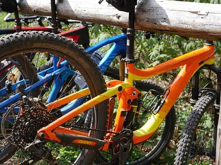 Mountain Bike, Rest, Palatinate Forest, Wheel, Fully