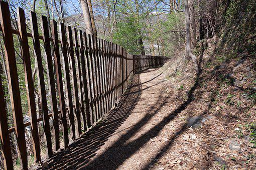 Away, Fence, Wood Fence, Fenced, Shadow, Forest