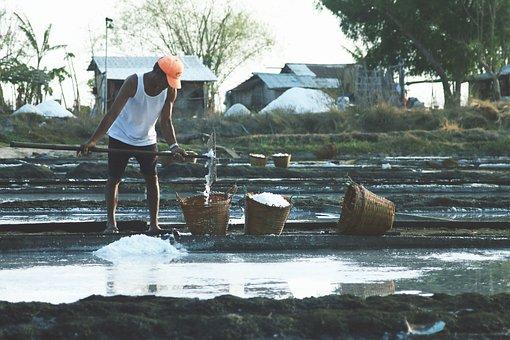 Salt Farm, Hard Work, Salt, Farm, White, Basket, Man