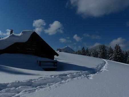 Winter, Snow, Hut, White, Wintry, Winter Dream, Light