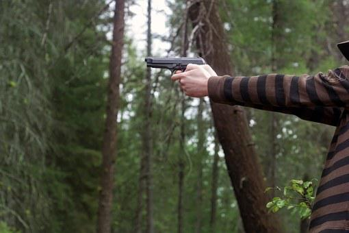 Hand, Gun, Pointing, Aiming, Target, Practice, Forest