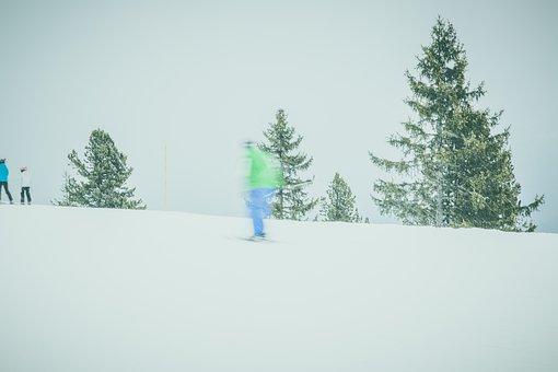 Ski, Skiing, Ski Area, Ski Poles, Ski Run, Snow, Cold