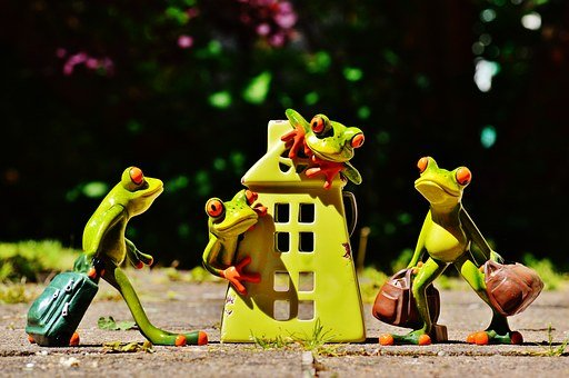 Frogs, At Home, Welcome, Arrive, Deco, Funny, Frog