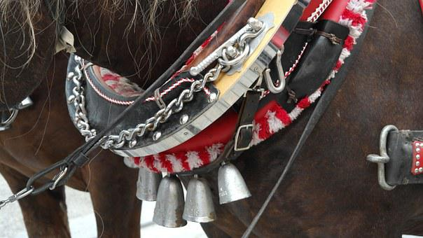 Harness For Horses, Horses, Reins, Animals, Ride