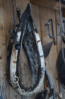 Pointed Collar, Collar, Horse, Work Harness