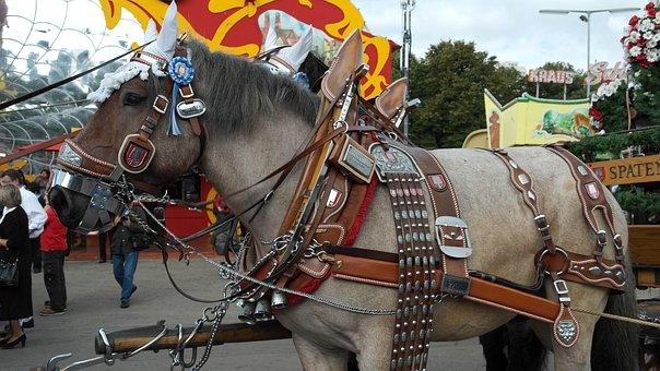Brewery Horse, Kaltblut, Horse, Draft Horse, Workhorse
