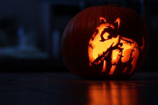 Pumpkin, Halloween, Frankenweenie, Zombie Dog, Sparky