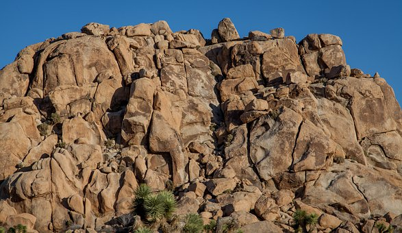 Joshua Tree, Rocks, Outcropping, Outside, Day