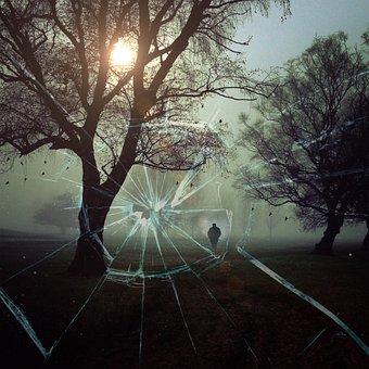 Disc, Shot, Assassination Attempt, Attack, Landscape