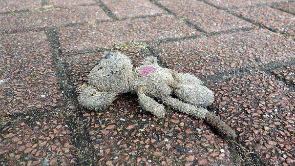 Mouse, Lost, Victim Of A Traffic Accident, Death