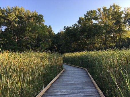 Wetland, Boardwalk, Westwood Hills Nature Center
