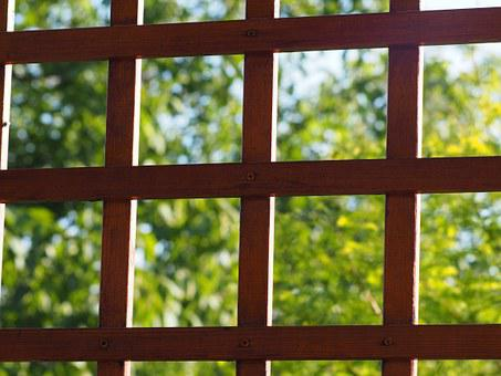 Grating, Truss, Pergola, Garden, Wood, View, Frame