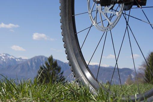 Wheel, Spokes, Close Up, Rim, Mature, Mountain Bike