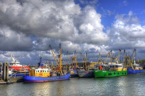 Lauwersoog, Port, Fishing Boats, Fisheries, Groningen