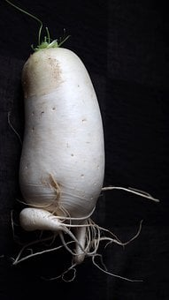 Radish, White, Raphanus, Vegetables, Cruciferous Plant