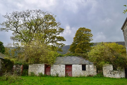Derelict Farmyard, Autumn, Trees, Country, Deserted
