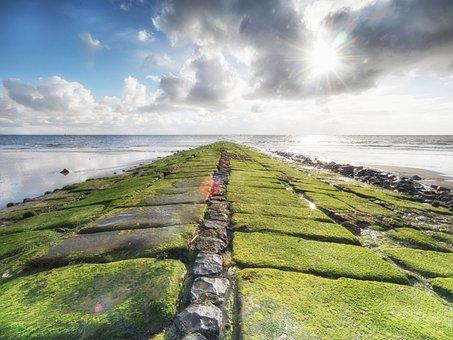 Norderney, Groyne, Beach, North Sea, Beach Buhne