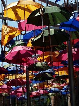 Screen, Umbrella, Colorful, Shade Tree, Protection