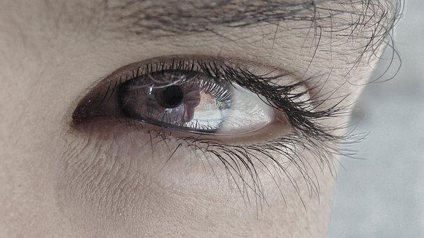 Eye, Macro, Camera, Sony