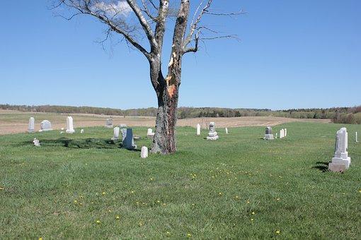Cemetery, Tree, Peaceful, Graveyard, Fall, Sky, Nature