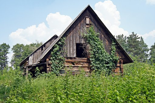 Log Cabin, Weathered, Overgrown, Lapsed, Nature