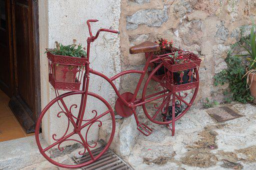Valldemossa, Mallorca, Bike, Plant