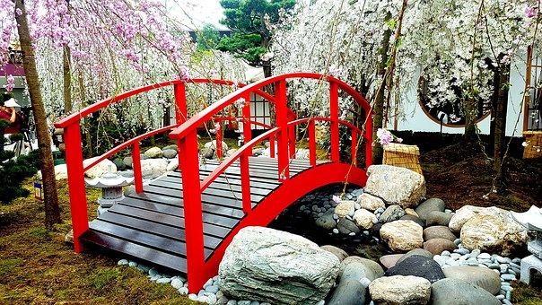 Bridge, Cherry Blossom, Landscape, Sakura, Japan