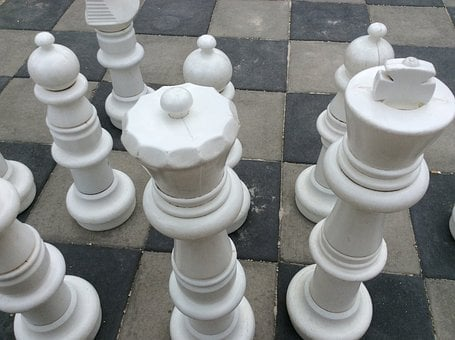 Chess, Project Management, Recruitment, Development