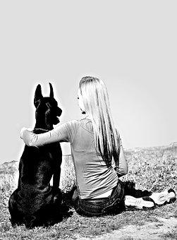 Black White, Girl Sitting, Dogs, Doberman, Hug, Love