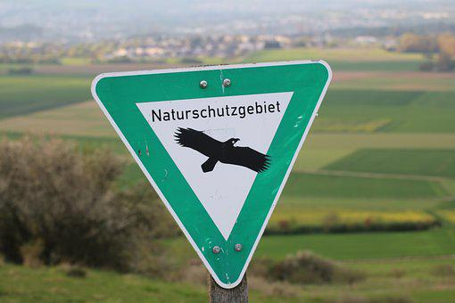 Nature, Nature Conservation, Spring, Landscape