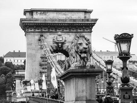 Budapest, Hungary, Bridge, Chain Bridge, Statue, Danube
