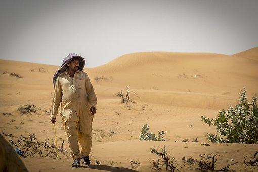 Desert, Emirates, Nero, Bedouin, Camel, Hot, Dromedary