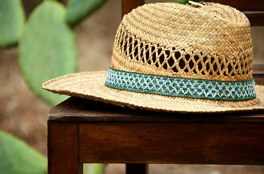 Hat, Straw Hat, Headwear, Sun Protection, Coneflower