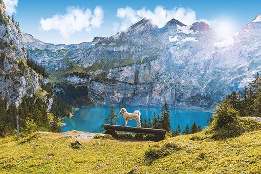 Lake Oeschinen, Switzerland, Mountains, Landscape