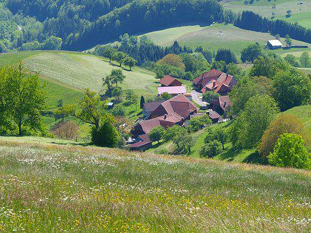 Landscapes, Nature, Mountain, Field, Black Forest