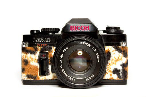 Camera, Fashion, Hipster, Leopard, Lens, Style, Retro