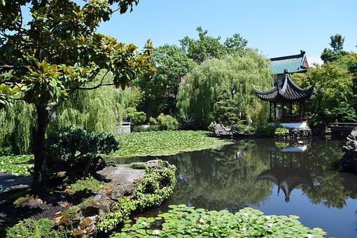 Garden, Chinese, Vancouver, Nature, Park, Zen, Pond