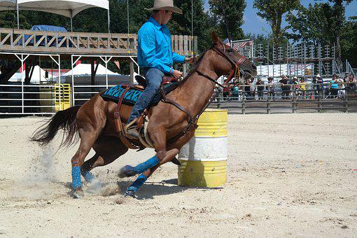 Equiblues, Rodeo, Barel Racing, Race Horse, Horse