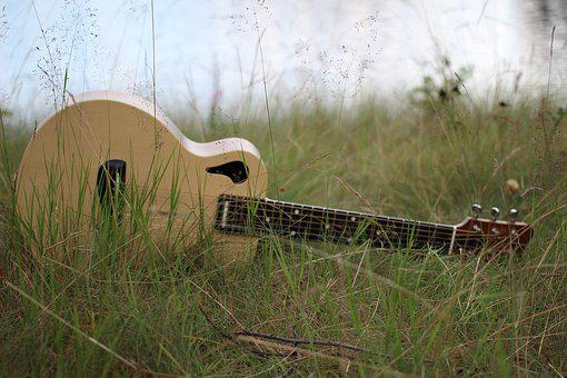 Guitar, Grass, Wp Strings