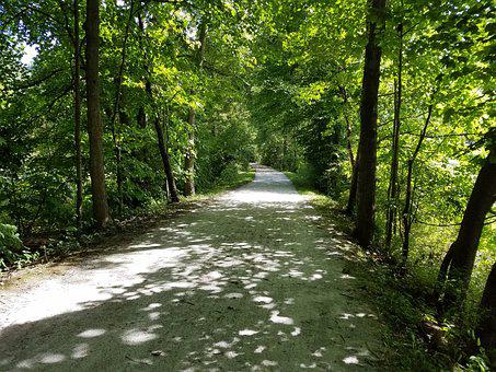 Trail, Park, Hike, Cuyahoga Valley National Park