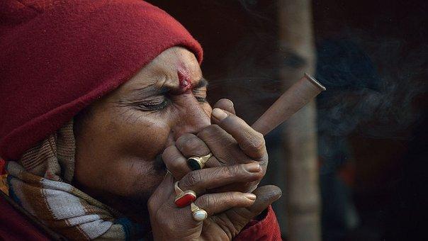 Bhang, Marijuana, India, South, Asia, Vkj Pandey, Dev