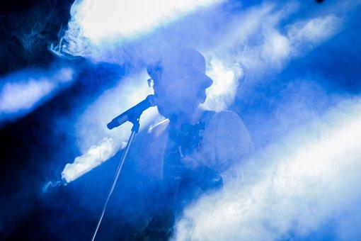 Concert, Singer, Music, Musician, Performance