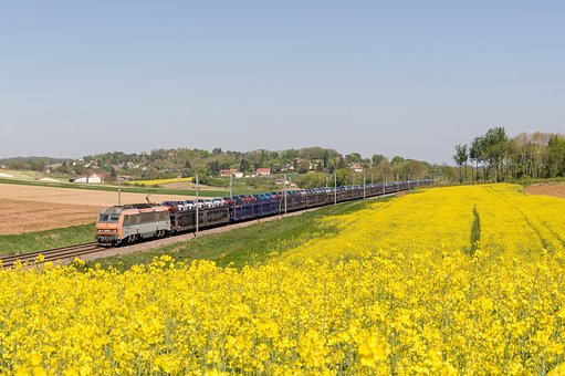 Train, Sybic, Bb 26000, Rapeseed, Gefco, Transport Cars