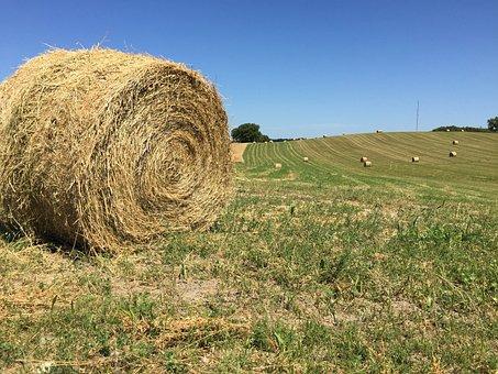 Round Hay Bale, Big Round Bale, Farm Scene, Field Scene