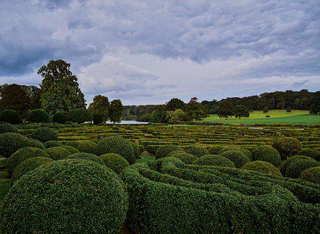 English, British, Country, Garden, Maze, Hedges